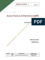 Modelo de Manual Bpm[1]
