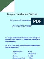 La terapia familiar en la psicosis como proceso de reconfirmacion. Juan Luis Linares.