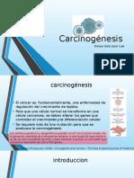 Carcinogénesis