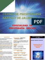 INF. FORMARTE PSICOTERAPEUTA