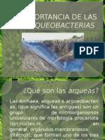 IMPORTANCIA-DE-LAS-ARQUEOBACTERIAS.pptx