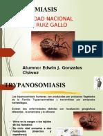 TRIPANOSOMA  edwin.pptx