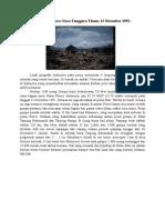 bencana indonesia -p opung.docx