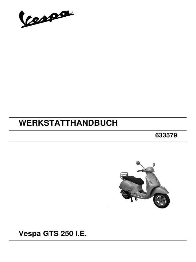 Handbuch GTS 250 (1).pdf