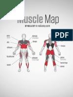 Mapa de la musculatura corporal