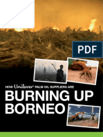 How Unilever palm oil suppliers are Burning up Borneo
