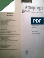 Antropologia Słowa