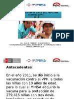 Teleconferencia VPH 30 Oct 2014