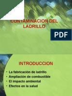Contaminacion Por Ladrillo