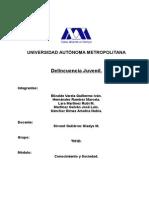 Delincuencia juvenil.doc