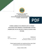 TESIS MODELO NERVIS BOULLIN.pdf