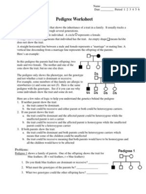 pdf - pedigree worksheet   Genotype   Dominance (Genetics)