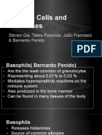 immune_cells_and_processes (2).pptx