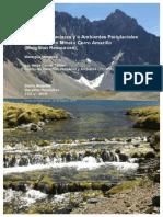 Informe CEDHA Cerro-Amarillo Version 24-FEB-2015