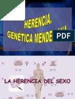 genetica_mendeliana2__2bach.pdf