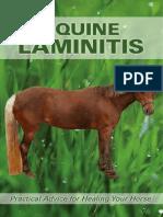 equine-laminitis.pdf