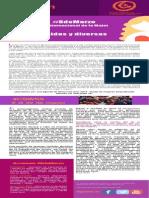 Boletín 01-2015 RSMLAC
