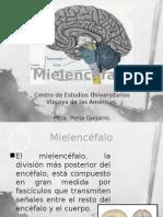 10-Mielencéfalo