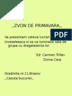 31 Presentation 1