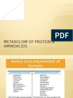 Metabolism of Protein & Aminoacids