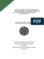 GESTION DEL CONOCIMIENTO EN GRANDES EMPRESAS