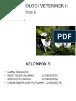 Toxoplasmosis Ppt