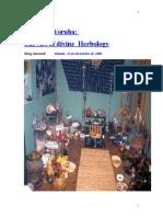 Yorubic Medicin Espanol