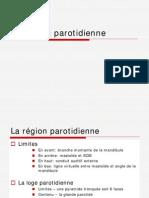 Región parotida