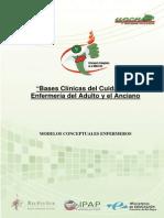 Modelos Conceptuales Enfermeros BCCAA Plantilla (1)