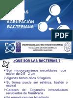 Formas y Agrupacion Bacteriana