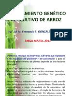 2 MEJORAM GENÉT ARROZ.pdf