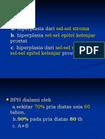 Benign Prostatic Hyperplasia (1)
