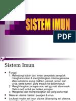 SISTEMIMUN_revisi