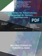 Micobacterias atipicas