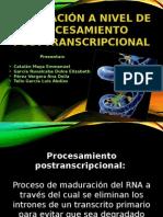 Procesamiento postranscripcional