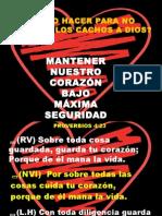 MAXIMA SEGURIDAD.pptx
