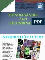 Presentacion Adn Recombinante 1