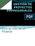 Gestión de Proyectos Empresariales