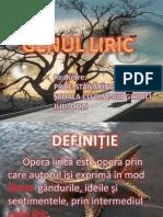 Didactic Ro Genulliric