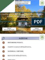 završni rad .pdf