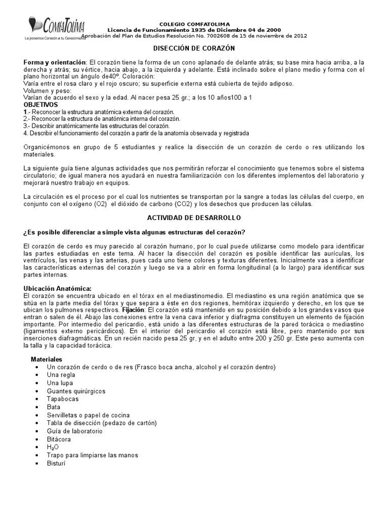 Laboratorio Diseccion Corazon (Septimo)