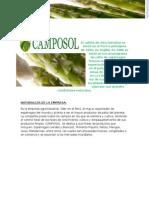 Empresa Camposol