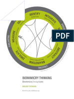 Biomimicry Design Lens