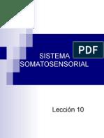 Lección 10 Sistema Somatosensorial (1)