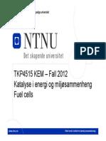 2012 Fuel cells.pdf