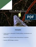 Neurodinamica