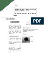 Guia de Lenguaje, Los Sustantivos