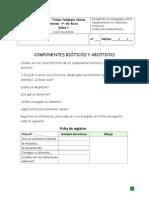 apoyo 1 Los Ecosistemas.docx