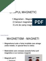 Câmpul Magnetic