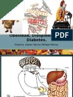 Obesidad Dislipidemias y Diabetes
